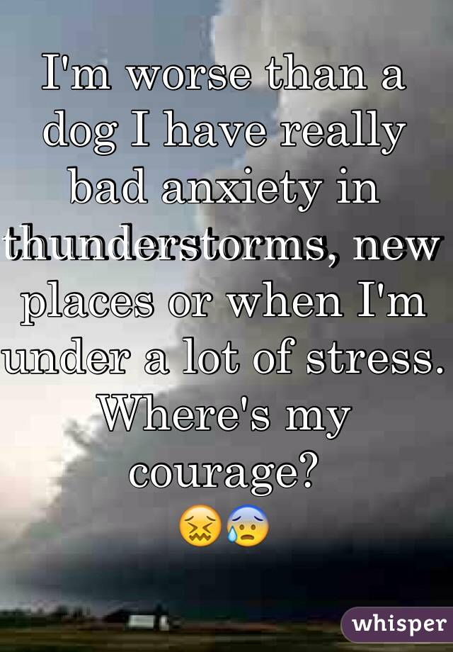 I'm worse than a dog I have really bad anxiety in thunderstorms, new places or when I'm under a lot of stress.  Where's my courage? 😖😰