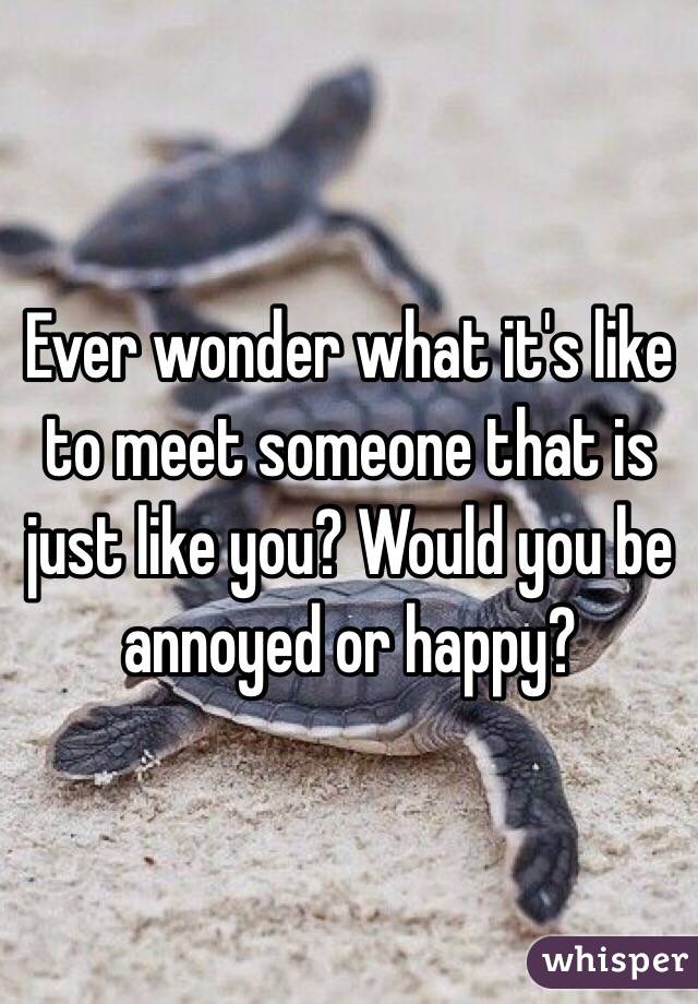 Ever wonder what it's like to meet someone that is just like you? Would you be annoyed or happy?