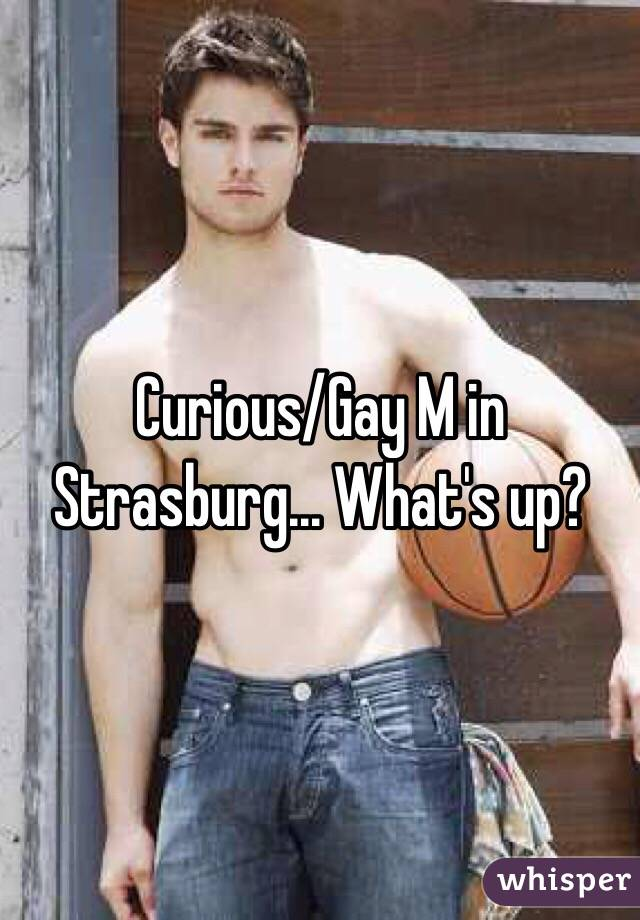 Curious/Gay M in Strasburg... What's up?