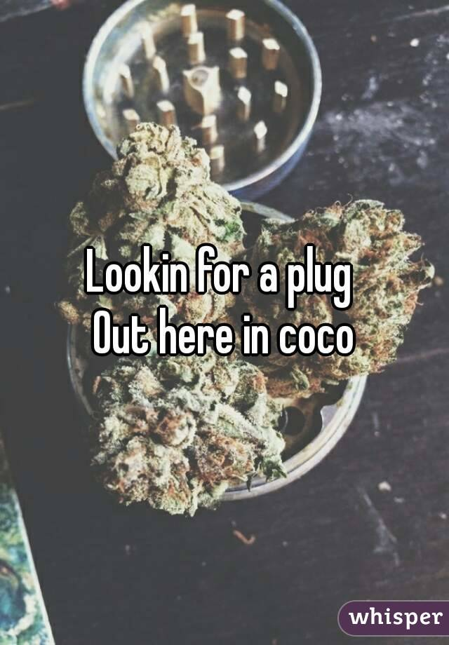 Lookin for a plug  Out here in coco