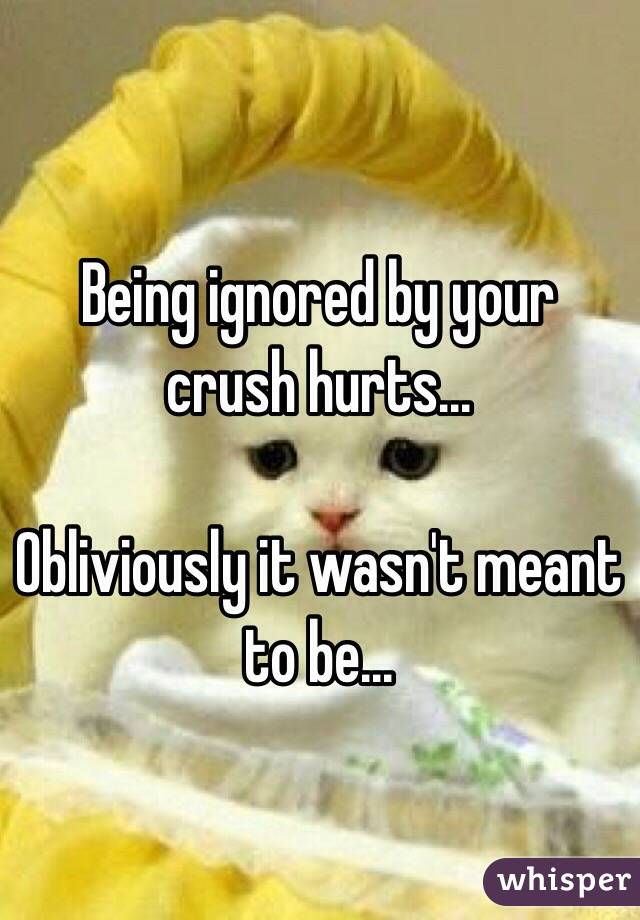 Being ignored by your crush hurts...  Obliviously it wasn't meant to be...