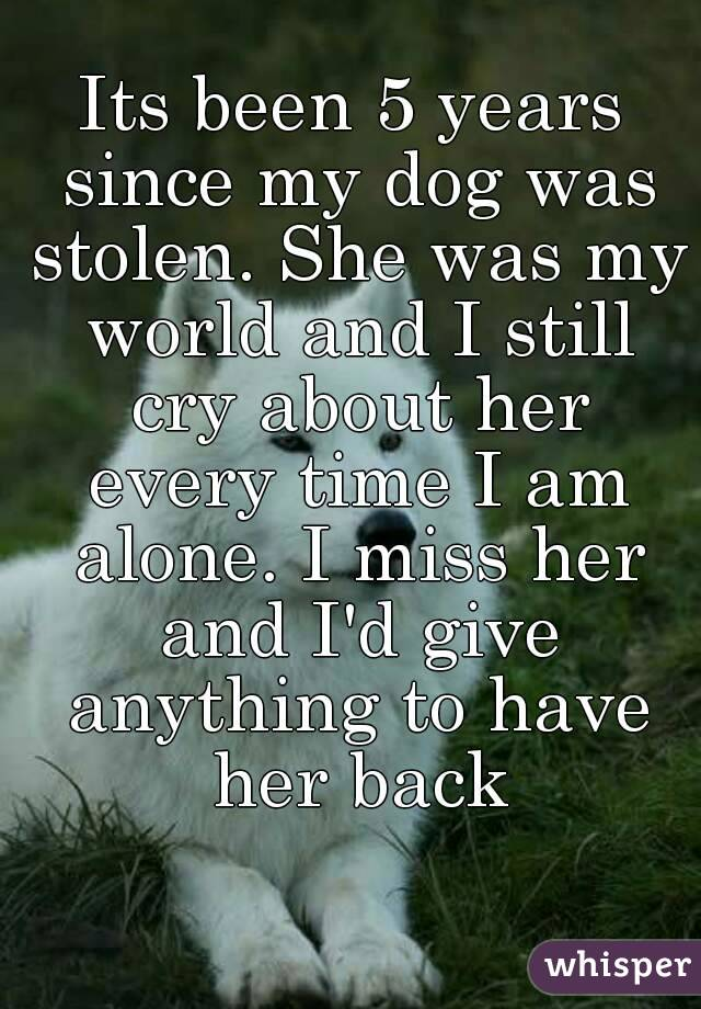 Its been 5 years since my dog was stolen. She was my world and I still cry about her every time I am alone. I miss her and I'd give anything to have her back