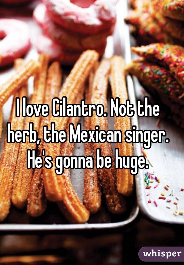 I love Cilantro. Not the herb, the Mexican singer. He's gonna be huge.