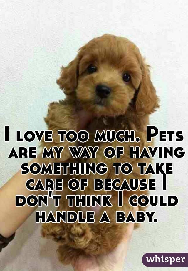 I love too much. Pets are my way of having something to take care of because I don't think I could handle a baby.
