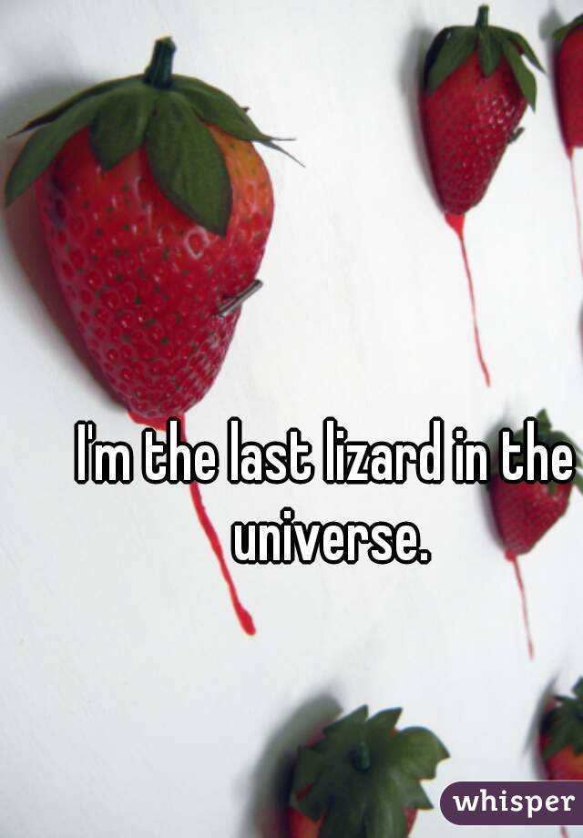 I'm the last lizard in the universe.