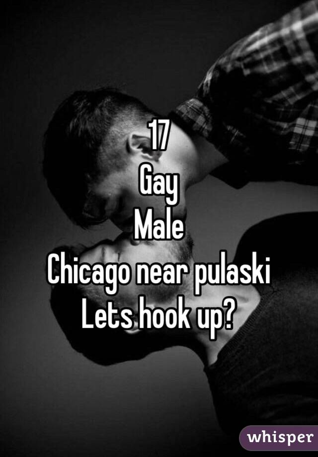 17  Gay Male Chicago near pulaski Lets hook up?