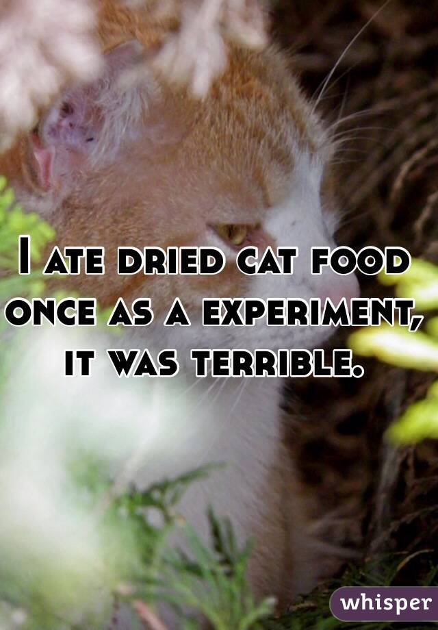 I ate dried cat food once as a experiment, it was terrible.