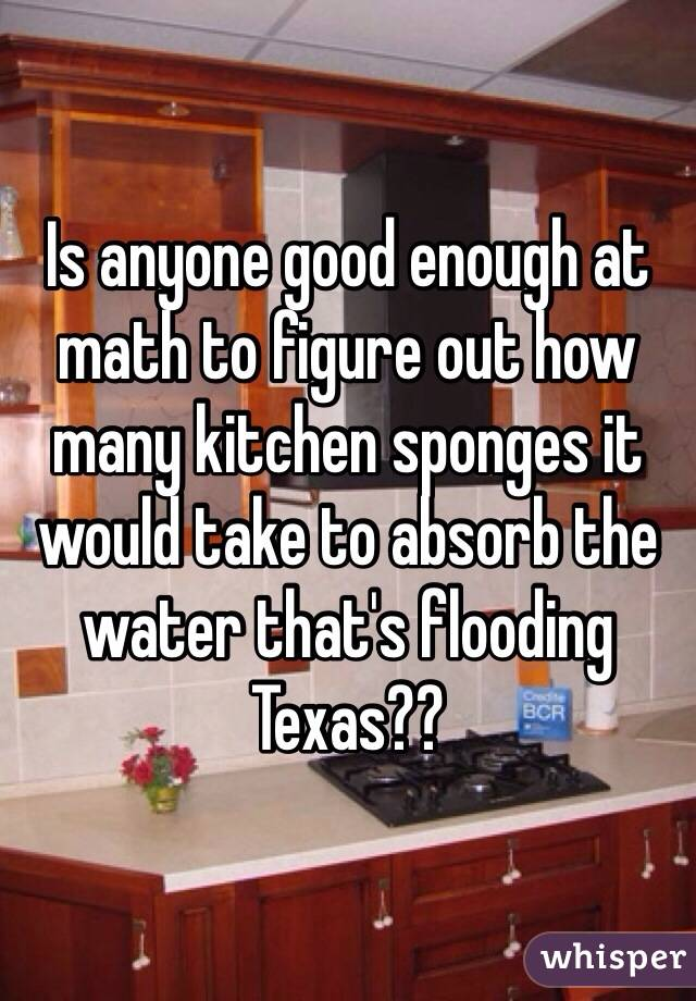 Is anyone good enough at math to figure out how many kitchen sponges it would take to absorb the water that's flooding Texas??