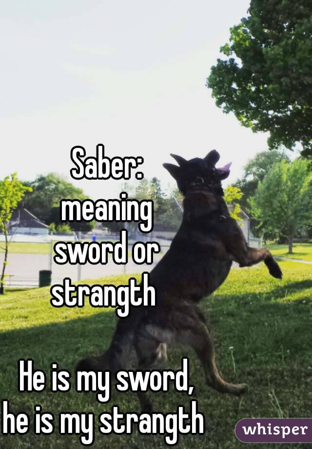 Saber:  meaning  sword or  strangth    He is my sword,  he is my strangth