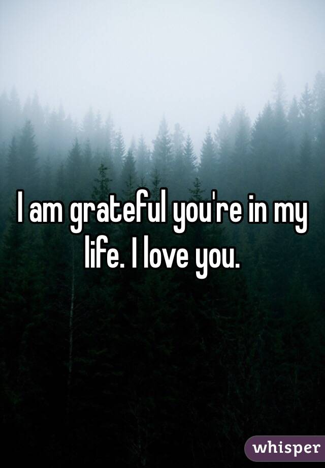 I am grateful you're in my life. I love you.