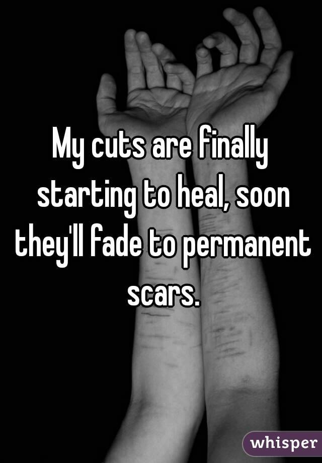 My cuts are finally starting to heal, soon they'll fade to permanent scars.