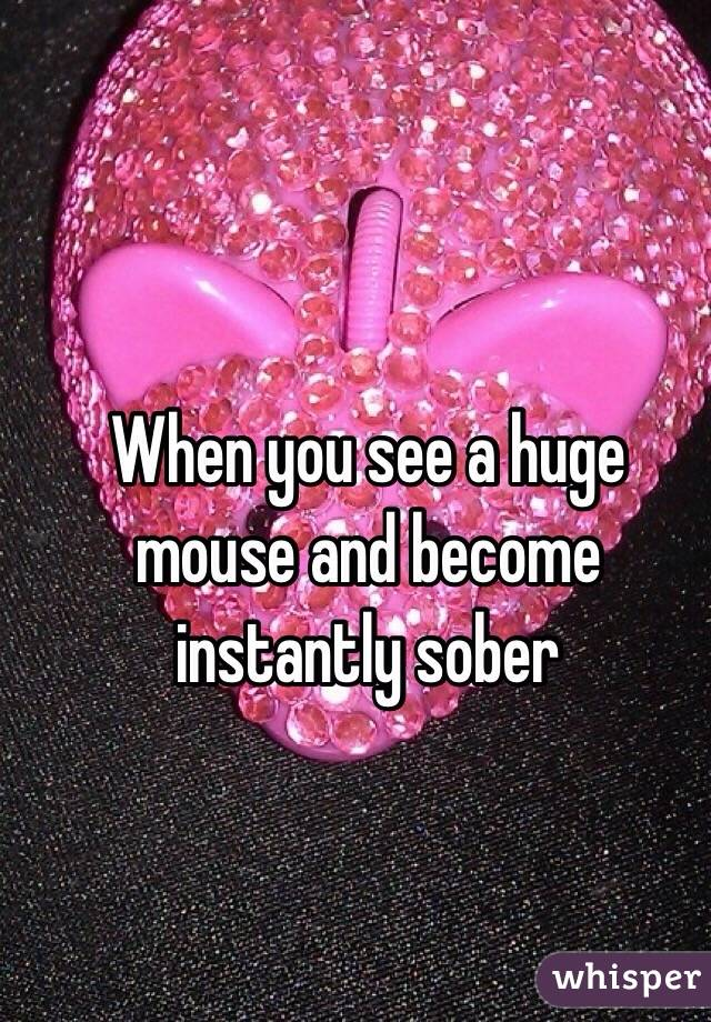 When you see a huge mouse and become instantly sober