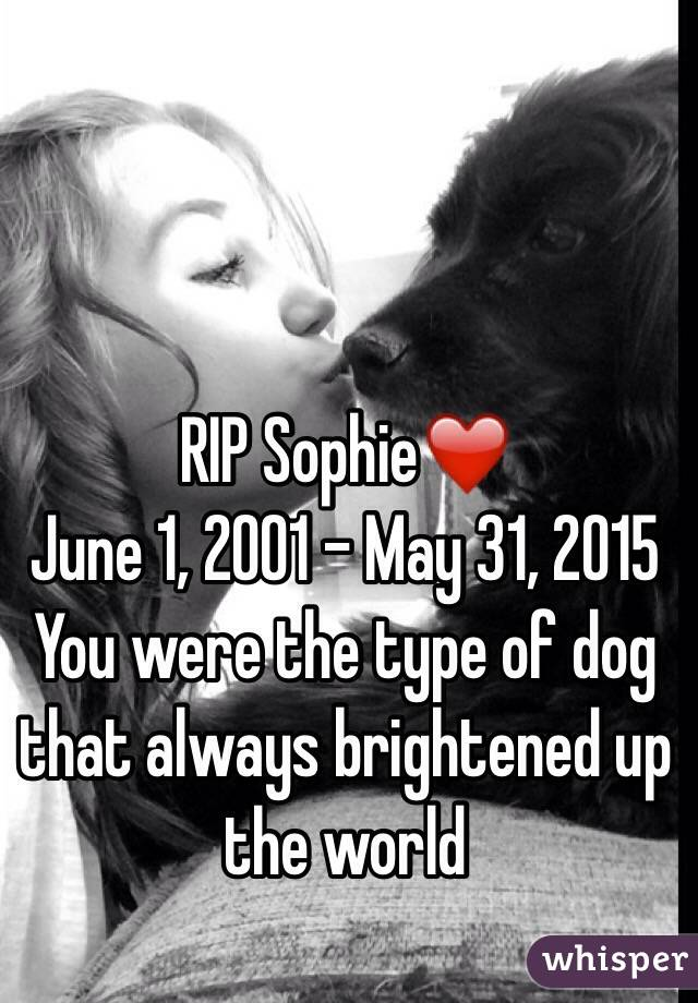 RIP Sophie❤️ June 1, 2001 - May 31, 2015  You were the type of dog that always brightened up the world