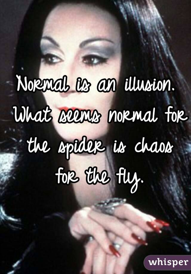 Normal is an illusion what seems normal for the spider is chaos for normal is an illusion what seems normal for the spider is chaos for the fly altavistaventures Choice Image