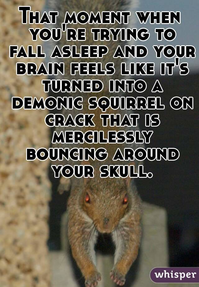 That moment when you're trying to fall asleep and your brain feels like it's turned into a demonic squirrel on crack that is mercilessly bouncing around your skull.