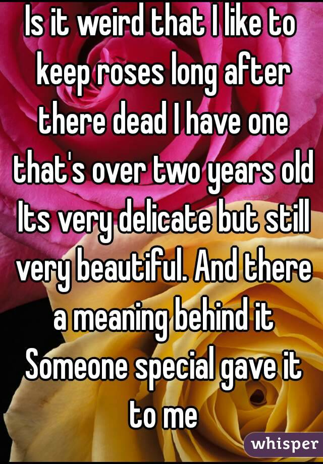 Is it weird that I like to keep roses long after there dead I have one that's over two years old Its very delicate but still very beautiful. And there a meaning behind it Someone special gave it to me