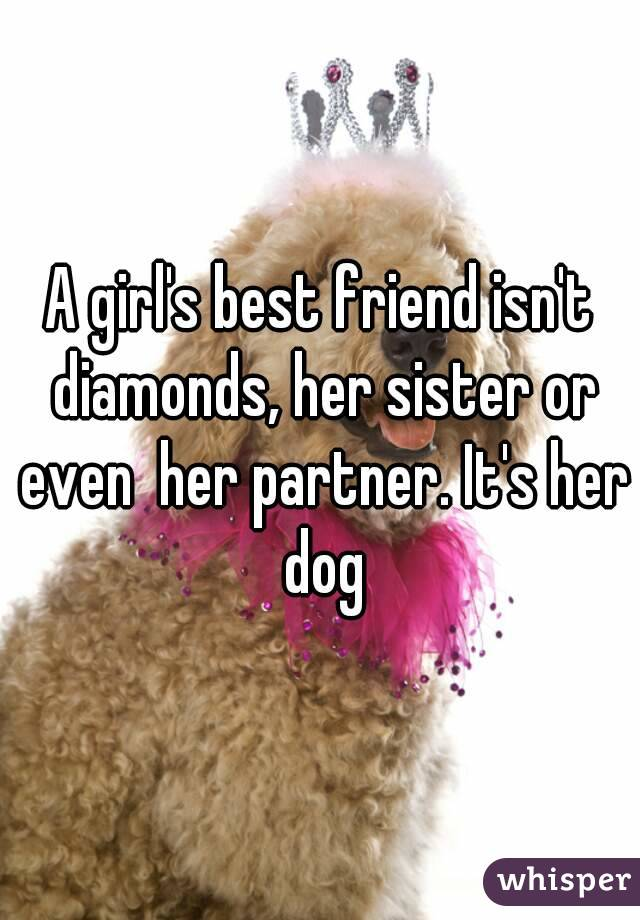 A girl's best friend isn't diamonds, her sister or even  her partner. It's her dog