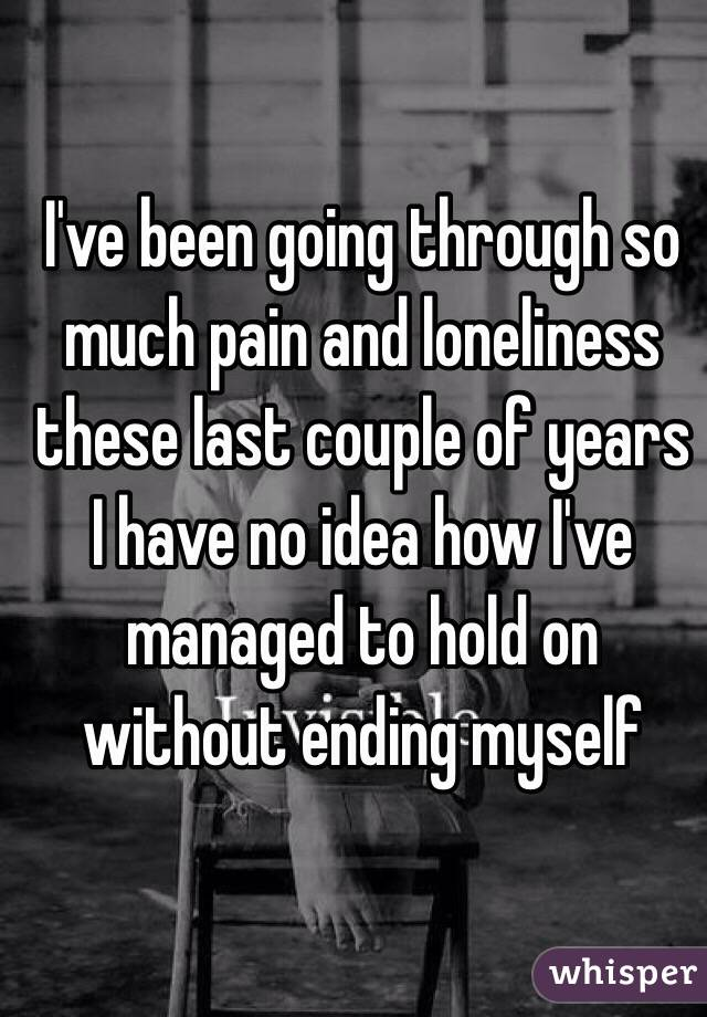 I've been going through so much pain and loneliness  these last couple of years I have no idea how I've managed to hold on without ending myself