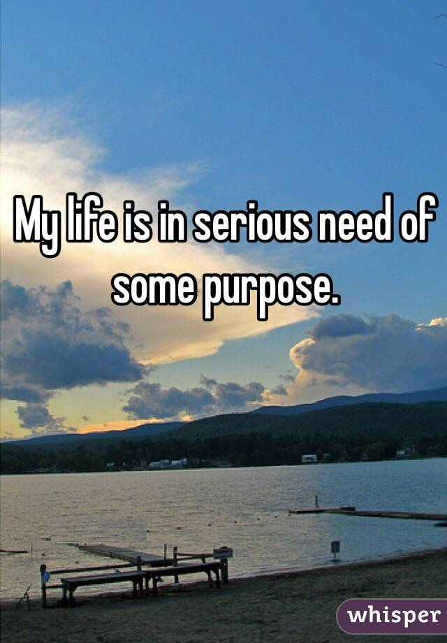 My life is in serious need of some purpose.