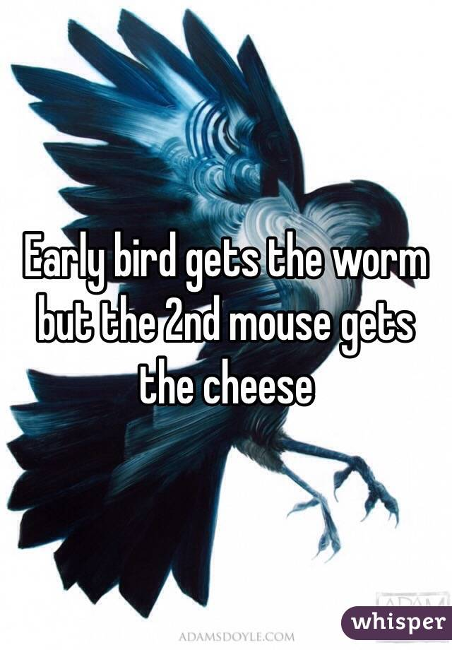 Early bird gets the worm but the 2nd mouse gets the cheese