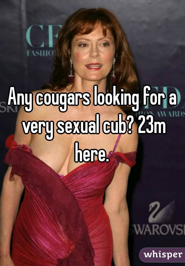Any cougars looking for a very sexual cub? 23m here.