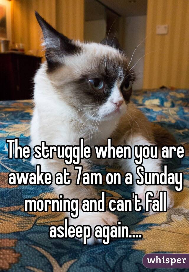 The struggle when you are awake at 7am on a Sunday morning and can't fall asleep again....