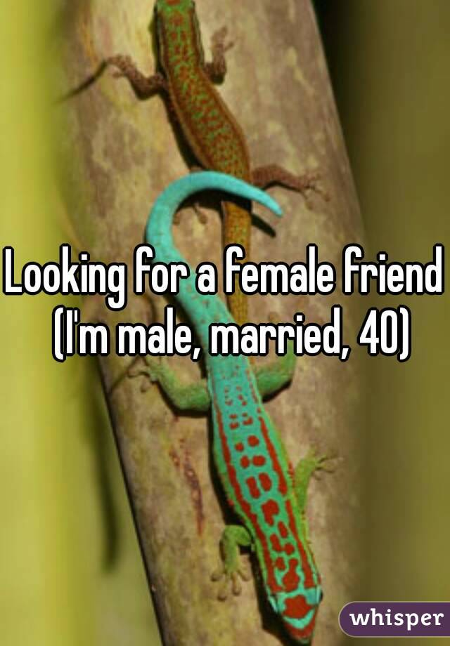 Looking for a female friend  (I'm male, married, 40)