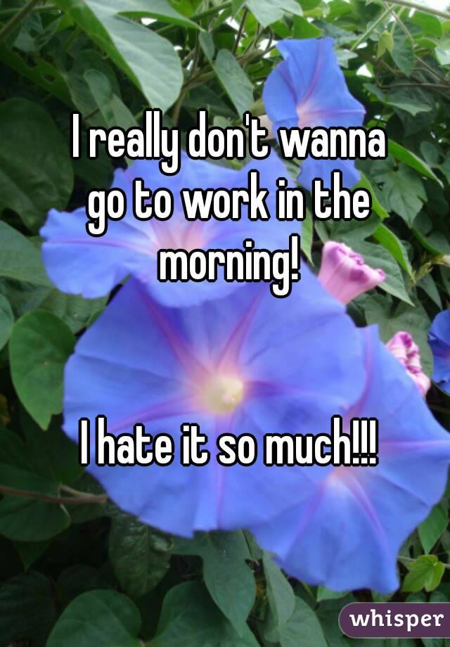 I really don't wanna go to work in the morning!   I hate it so much!!!