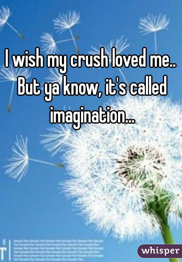 I wish my crush loved me.. But ya know, it's called imagination...