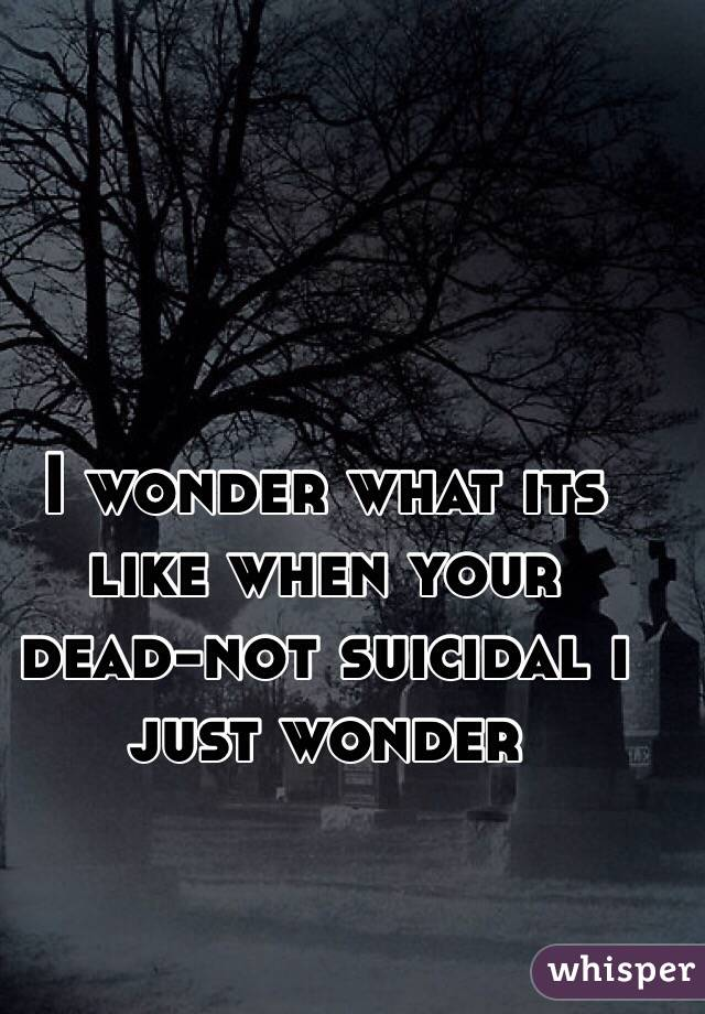 I wonder what its like when your dead-not suicidal i just wonder