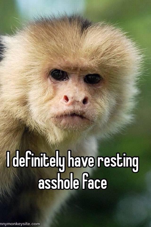 Asshole face net have