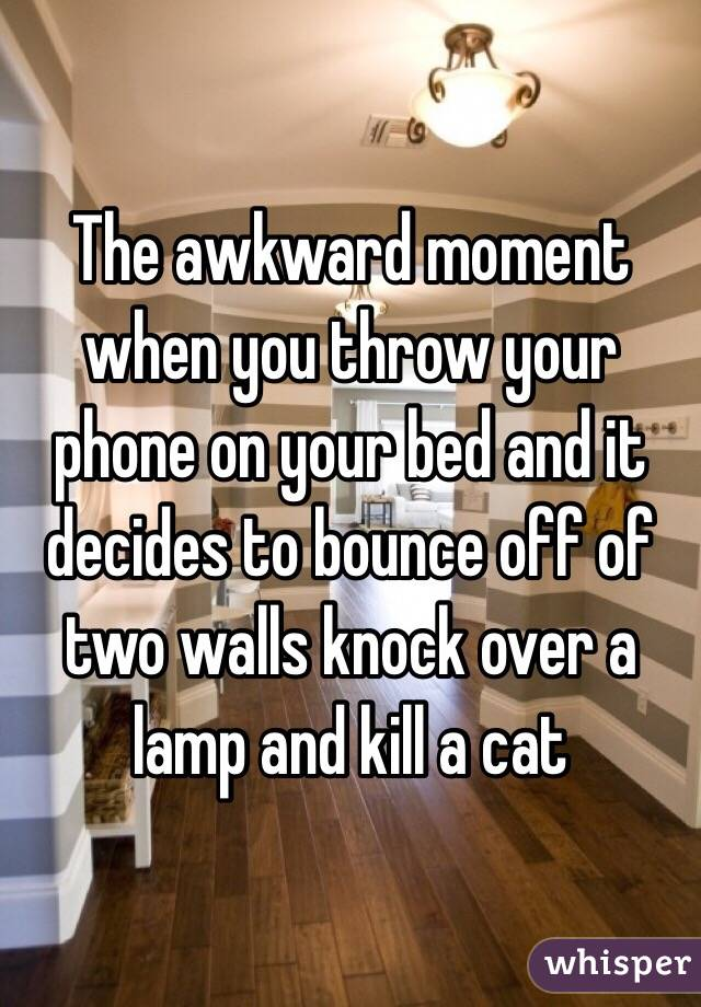 The awkward moment when you throw your phone on your bed and it decides to bounce off of two walls knock over a lamp and kill a cat