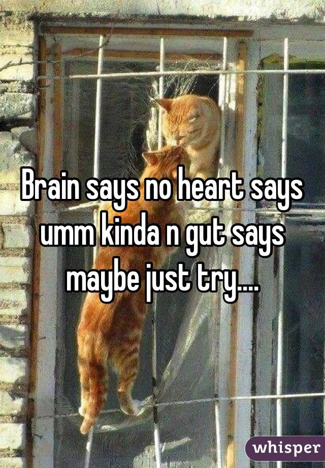 Brain says no heart says umm kinda n gut says maybe just try....