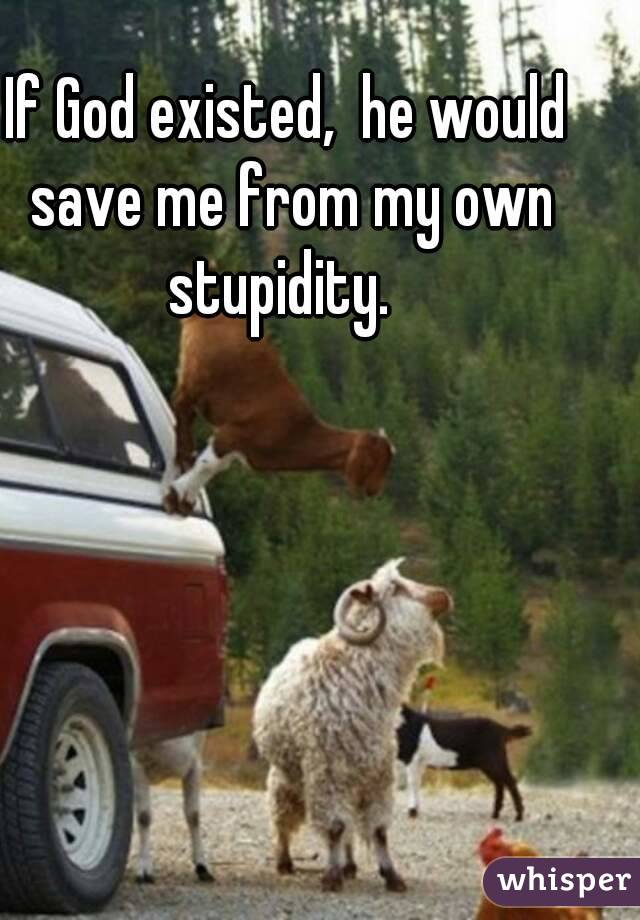 If God existed,  he would save me from my own stupidity.
