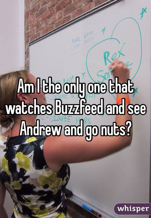 Am I the only one that watches Buzzfeed and see Andrew and go nuts?