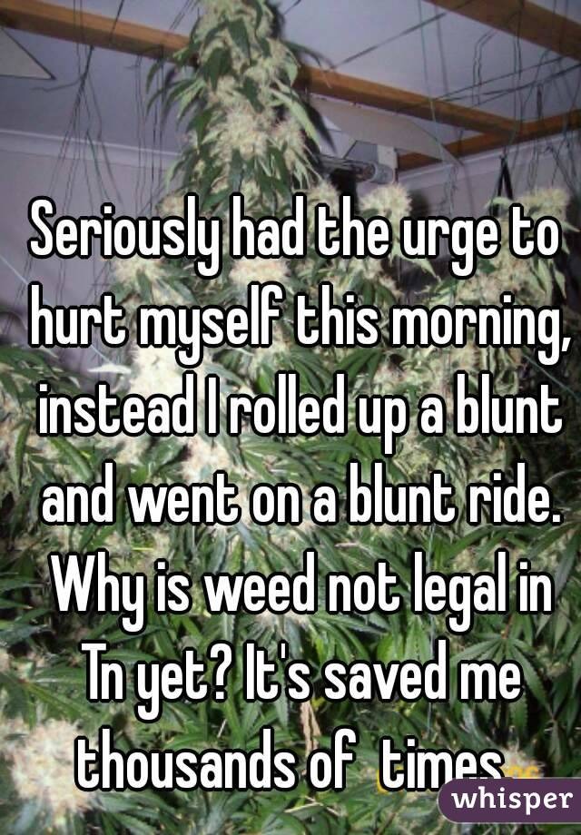 Seriously had the urge to hurt myself this morning, instead I rolled up a blunt and went on a blunt ride. Why is weed not legal in Tn yet? It's saved me thousands of  times.