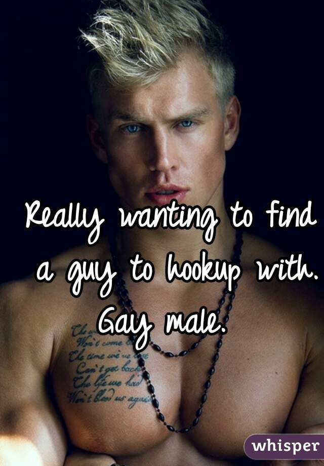 Really wanting to find a guy to hookup with. Gay male.