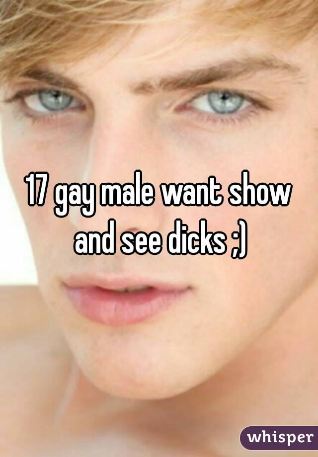 17 gay male want show and see dicks ;)