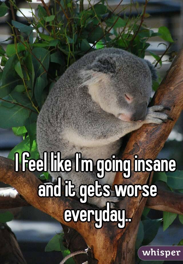 I feel like I'm going insane and it gets worse everyday..
