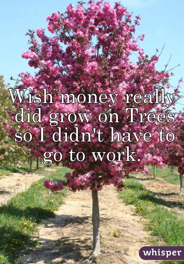 Wish money really did grow on Trees so I didn't have to go to work.