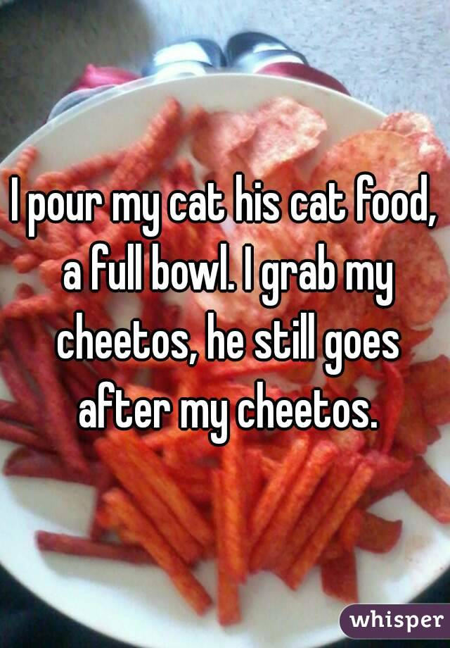 I pour my cat his cat food, a full bowl. I grab my cheetos, he still goes after my cheetos.