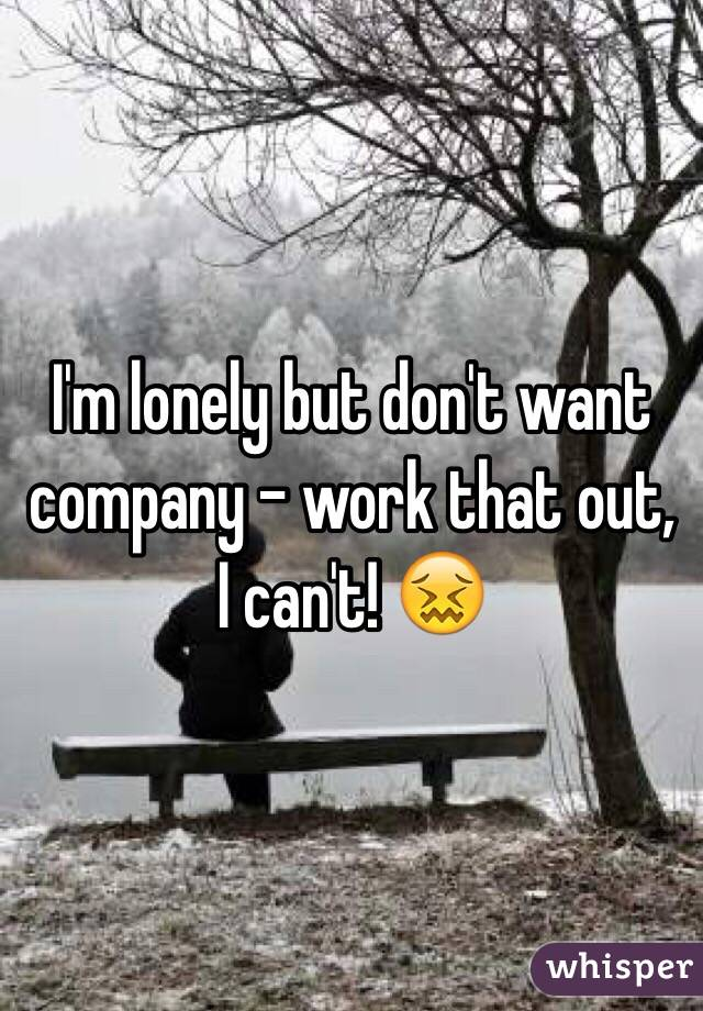 I'm lonely but don't want company - work that out, I can't! 😖