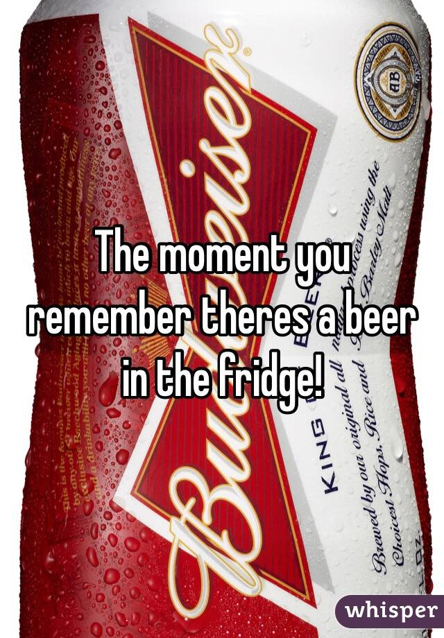 The moment you remember theres a beer in the fridge!