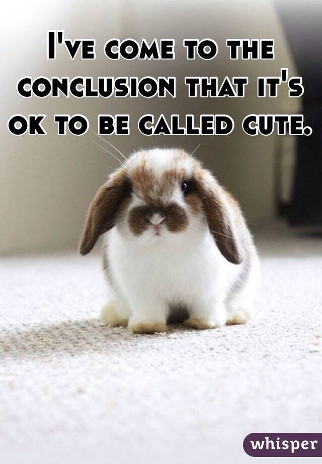 I've come to the conclusion that it's ok to be called cute.