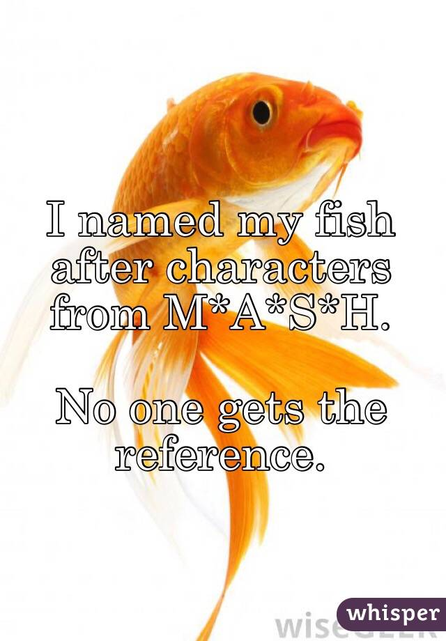 I named my fish after characters from M*A*S*H.  No one gets the reference.