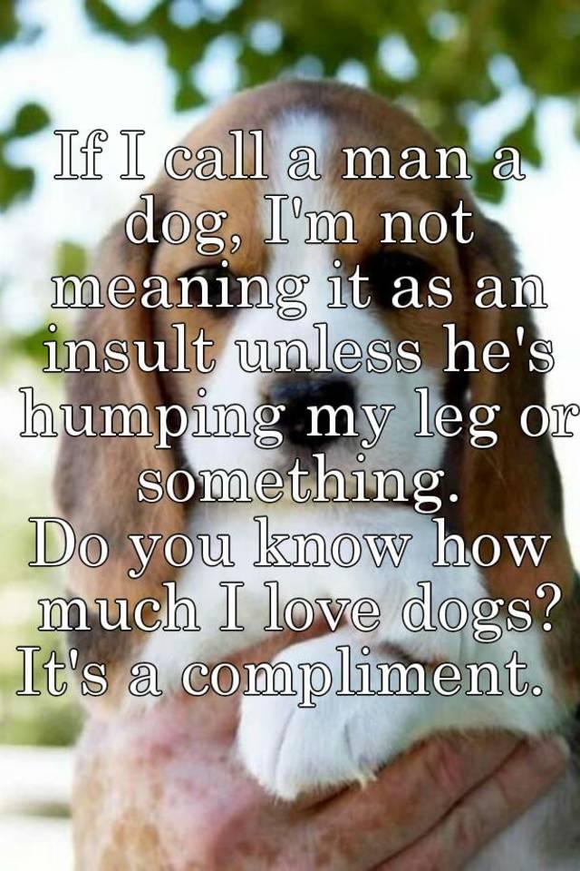 If I call a man a dog, I'm not meaning it as an insult
