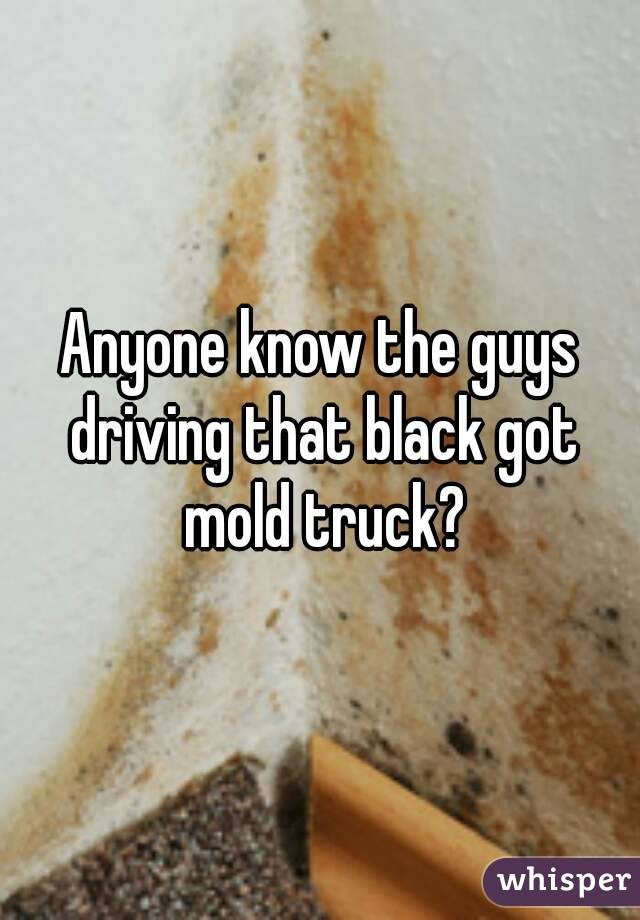 Anyone know the guys driving that black got mold truck?