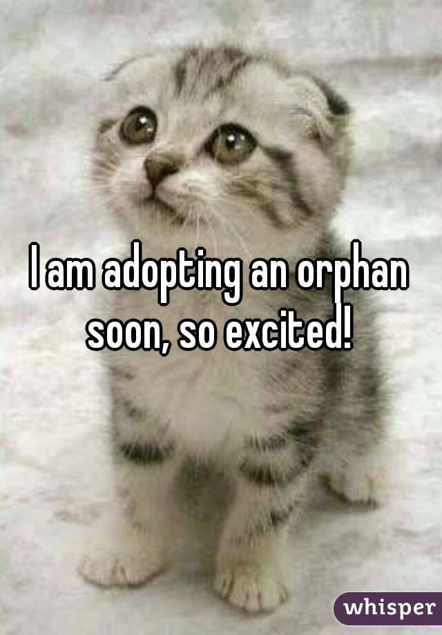 I am adopting an orphan soon, so excited!