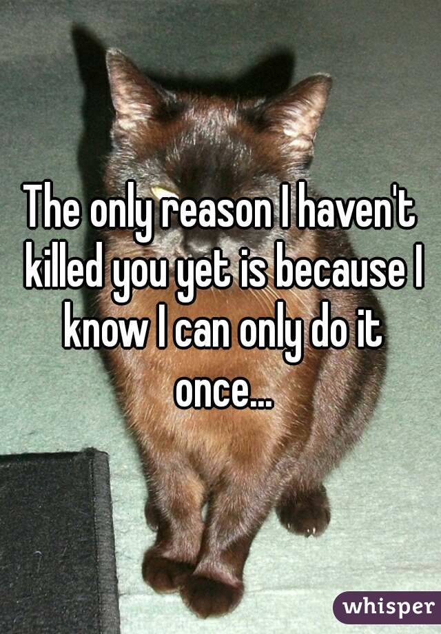 The only reason I haven't killed you yet is because I know I can only do it once...