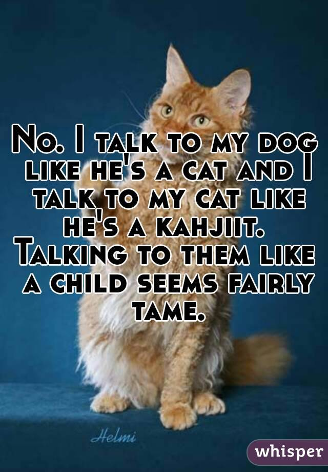 No. I talk to my dog like he's a cat and I talk to my cat like he's a kahjiit.  Talking to them like a child seems fairly tame.